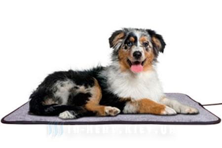теплый электрический коврик и собака